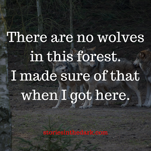 There Are No Wolves in this Forest
